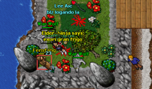 Fernfang Elder-Ninja