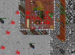 Grand Commander Soeren Gladiator Rage
