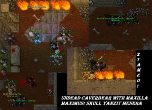 Undead Cavebear Skull Yanzit